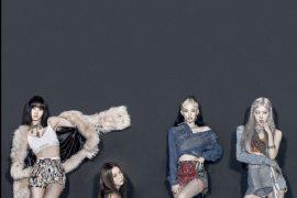 블랙핑크 리사, 8월 음악·단체 단독 다큐멘터리 공개