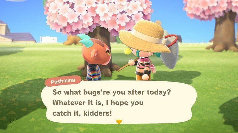 Animal Crossing : New Horizons에서 파시미나가 주민과 상호 작용합니다 (iMore를 통한 이미지).
