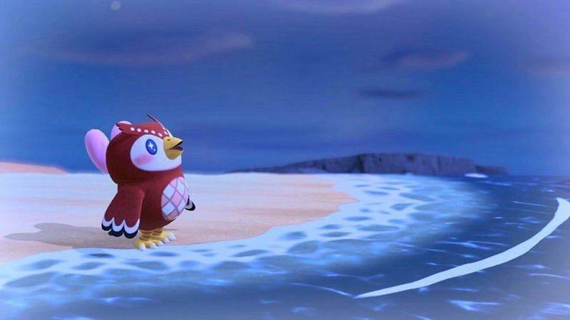 Animal Crossing : New Horizons의 슈퍼 스타 팬 Celeste (Pinterest를 통한 이미지)