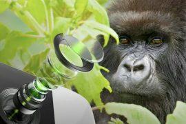 Corning의 새로운 Gorilla Glass는 스마트폰 카메라 렌즈를 보호하고 더 많은 빛을 허용합니다.